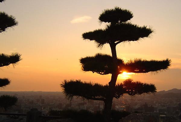 【ポケモンGO】愛媛県のレアポケモンの巣・おすすめスポットランキングまとめ