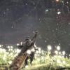 【モンハンワールド(MHW)】「古代樹の森」マップ最新情報!特徴や生息モンスターなど