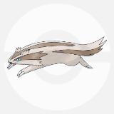 【ポケモンGO】マッスグマの巣・入手場所・レア度・ステータス・おすすめ技・評価