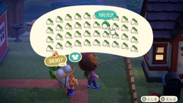【あつまれ どうぶつの森】効率よくカブで稼ぐ方法・2回のカブ値をすぐに確認する方法など!