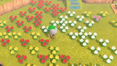【あつまれ どうぶつの森】花の交配のやり方・組み合わせ一覧