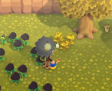 【あつまれ どうぶつの森】金のバラの作成手順・必要な道具など!