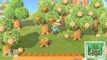 【あつまれ どうぶつの森】果物の種類・効果・木の増やし方など!